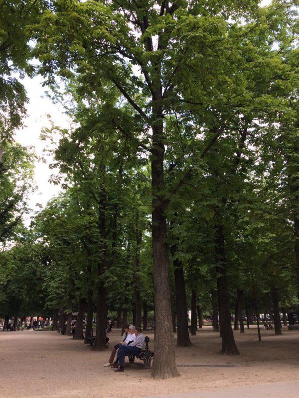 Jardin Lu Luxembour. Foto: Luís Araujo Pereira