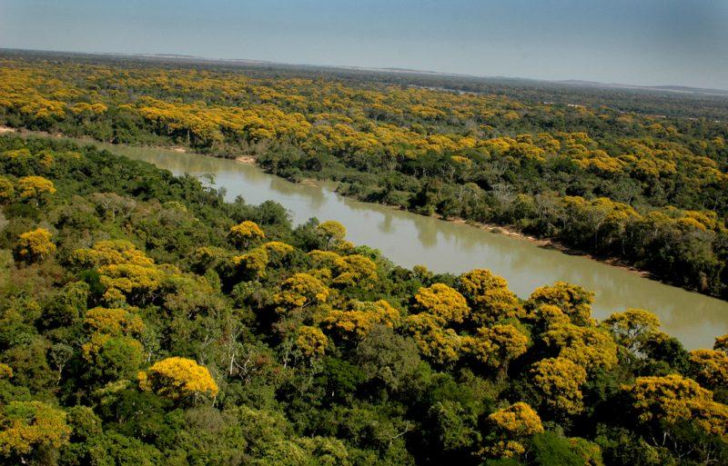 Mata as margens do rio Araguaia em Aruana/Goiás. Foto Ricardo Rafael. 22/07/2006.