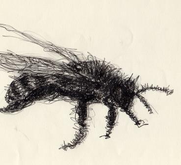 Ilustração: Laerte Araújo Pereira