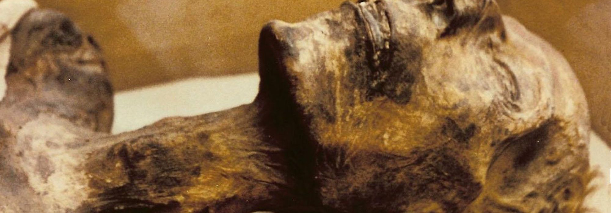 Imagem: Museu Egípcio do Cairo